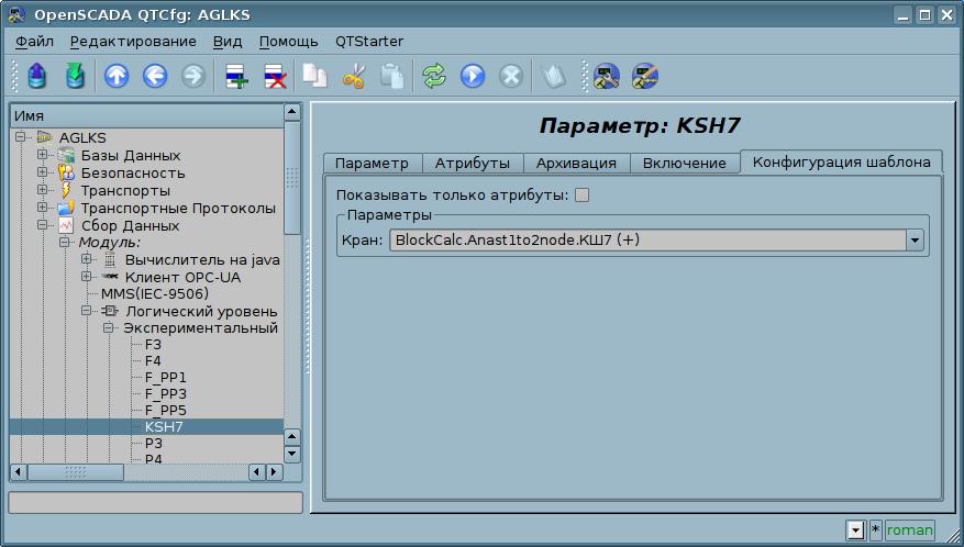 Вкладка конфигурации шаблона параметра. (69Кб)
