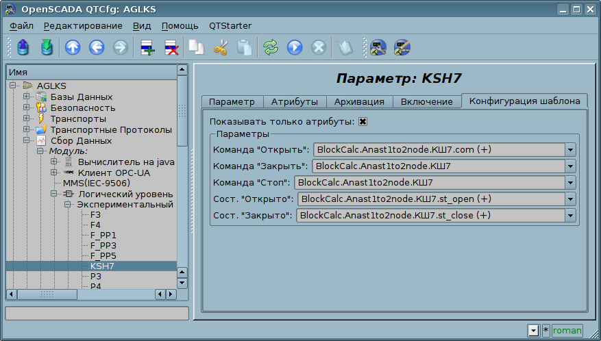 Вкладка конфигурации шаблона параметра. Показывать только атрибуты. (84Кб)