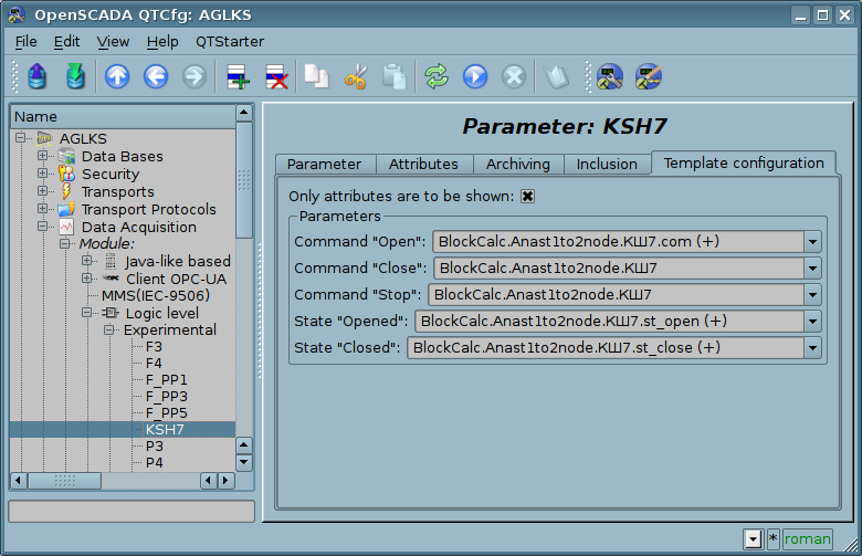 Configuration tab of the template of parameter. Show only attributes. (82 Кб)